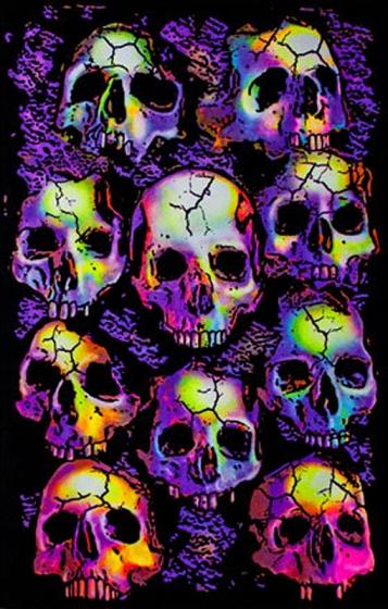 26 skull