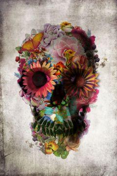 5 skull