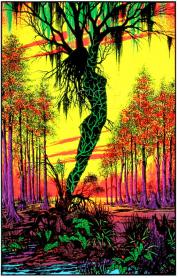 9 swamp